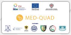 Med Quad logo